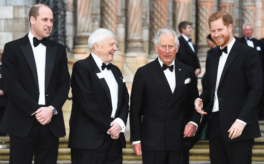 Prince William, Sir David Attenborough, Prince Charles, Prince Harry